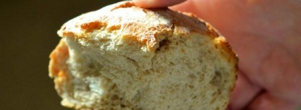 Mesék búzáról, aratásról, kenyérről