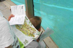 Veszprémi Állatkert feladatlap
